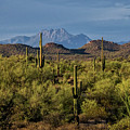 Four Peaks On The Horizon  by Saija Lehtonen