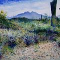 Four Peaks Phoenix Arizona Usa 2003  by Enver Larney