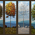Four Seasons by Dan Wheeler