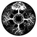 Four Seasons Of Tree by Doug LaRue