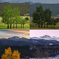 Four Seasons - Rocky Mountain National Park by Aaron Spong