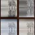 Four Seasons by Tony Kroll