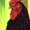Fowl Emperor by Cara Bevan