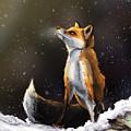 Fox by Andrew Reinhart