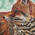 Fox by Monica Aguilar