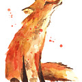 Fox Painting - Print From Original by Alison Fennell