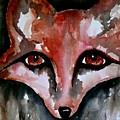 Fox Shadow Magic by Laura Heilman