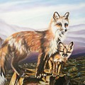 Foxes   Fundamental Foresight Foundation  by Sigrid Tune