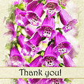 Foxglove Flowers Thank You Card by Christina Rollo