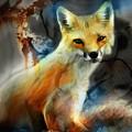 Foxy Baby by Bob Salo