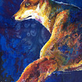 Foxy by Sherry Shipley