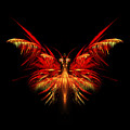 Fractal Butterfly by John Edwards