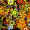 Fractal Floral Study 10-27-09 by David Lane