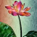 Fractal Flower by Arline Wagner