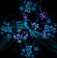 Fractal Forget Me Not Bouquet  by David Lane