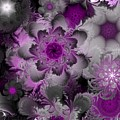 Fractal Garden 4 by David Lane