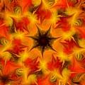Fractal Garden 6 by David Lane