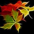 Fractal Leaves by Teresa Zieba
