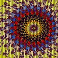 Fractal Outburst Catus 1 No. 10 - Sunsettia For Lea H A by Gert J Rheeders