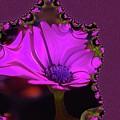 Fractual Flower  by Jeff Swan