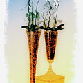 Fragile In Carthusia by Lynn Andrews