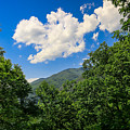 Frame Me A Cloud by Lisa Bell