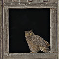 Framed by John Christopher
