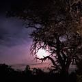 Framed Moon by Jenny Harrison