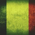 France Distressed Flag Dehner by David Dehner