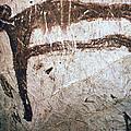 France: Mammoth Art by Granger