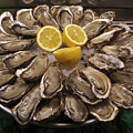 France, Paris Oysters On Display by Keenpress