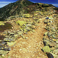 Franconia Ridge Alpine Trail by John Burk