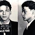 Frank Sinatra Mug Shot Horizontal by Tony Rubino