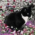Freckles In Flowers II by Diane Clancy