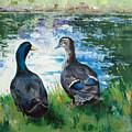 Fred And Ethel At Scott's Pond by Glenn Secrest