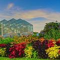 Frederik Meijer Gardens by Robert Pearson