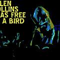 Free As A Bird by Ben Upham