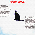Free Bird by Bill Cannon