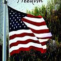 Freedom by Gerlinde Keating - Galleria GK Keating Associates Inc