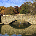 Freedom Park Bridge by Jill Lang