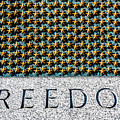 Freedom by SR Green