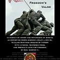 Freedom's Valor II by Patrick J Maloney