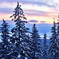 Freezing Sunset 14 by Alex Art and Photo