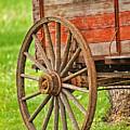 Freight Wagon Wheel by Timothy Flanigan