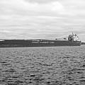 Freighter In Midland Bay by Elaine Mikkelstrup