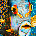 French Angelfish Face by Daniel Jean-Baptiste