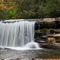 French Broad Falls by Jill Lang