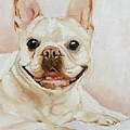 French Bulldog by Boni Arendt