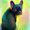 French Bulldog Painting 4 by Svetlana Novikova