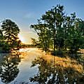 French Creek 17-029 by Scott McAllister
